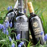 vína ze spanělské strany řeky Douro
